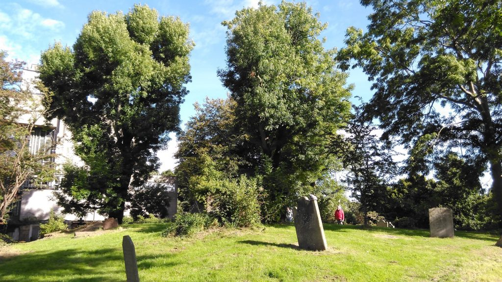 Friar's Bush Graveyard