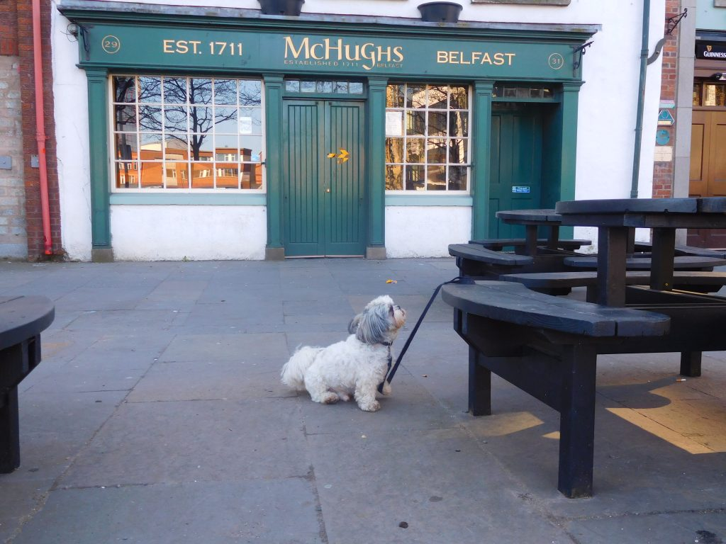 You talking to me? - Scotty at McHughs