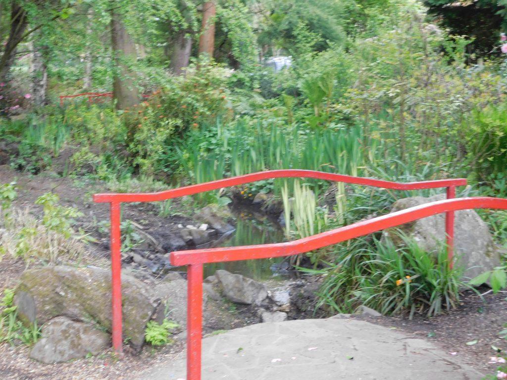Botanic Gardens Belfast - bridge over stream