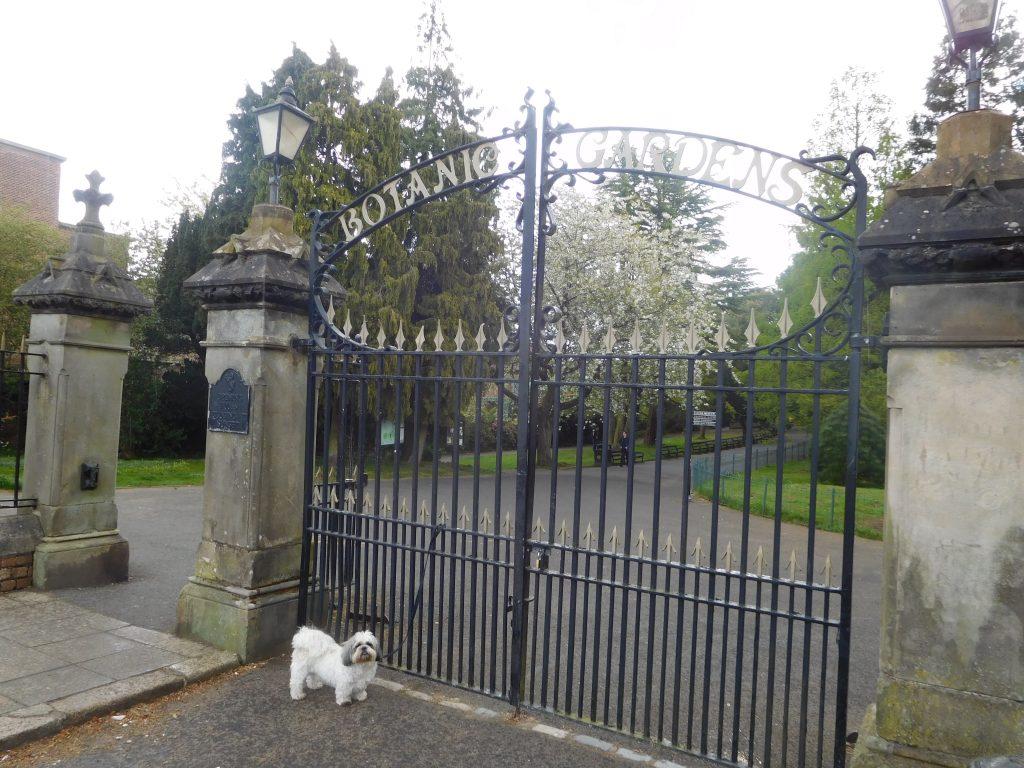 Botanic Gardens Belfast - Main Gates