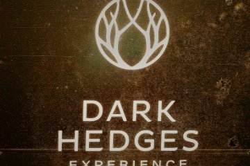 Dark Hedges sign