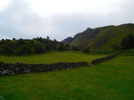 Walled field
