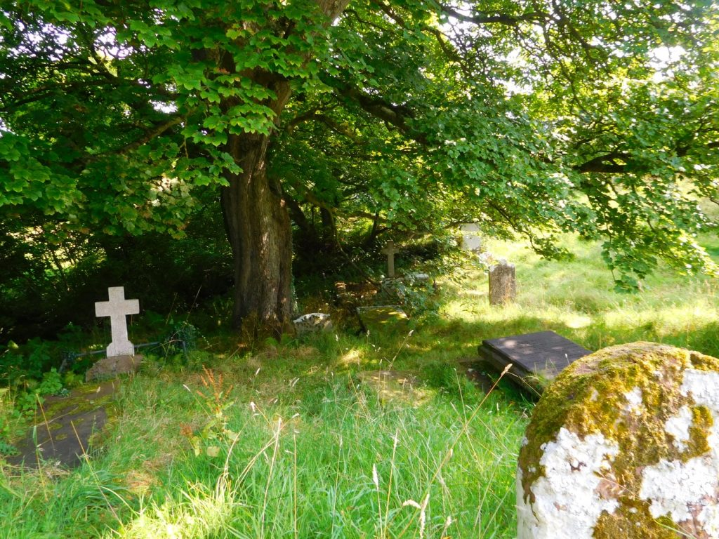 Graves & Nature
